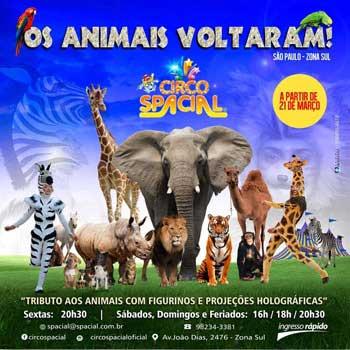 Circo Spacial Os Animais Voltaram